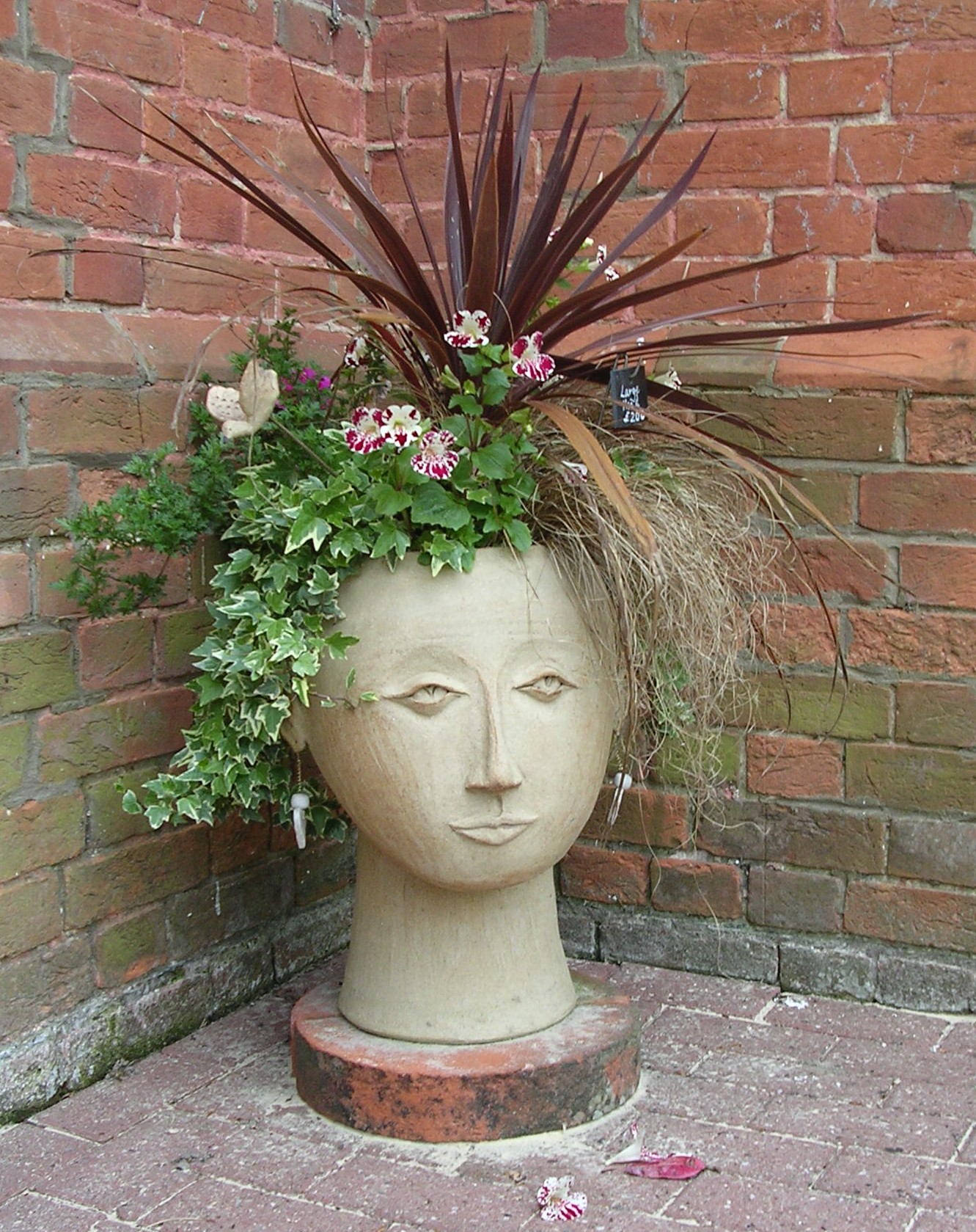 Large Head Planters Ceramic Gallery Cookie Scottorn